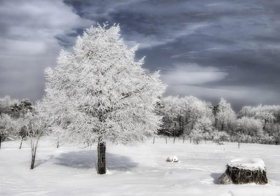 冬になると肩こりや腰痛が悪化、ぎっくり腰にご注意を!生駒えだ鍼灸整骨院・整体院